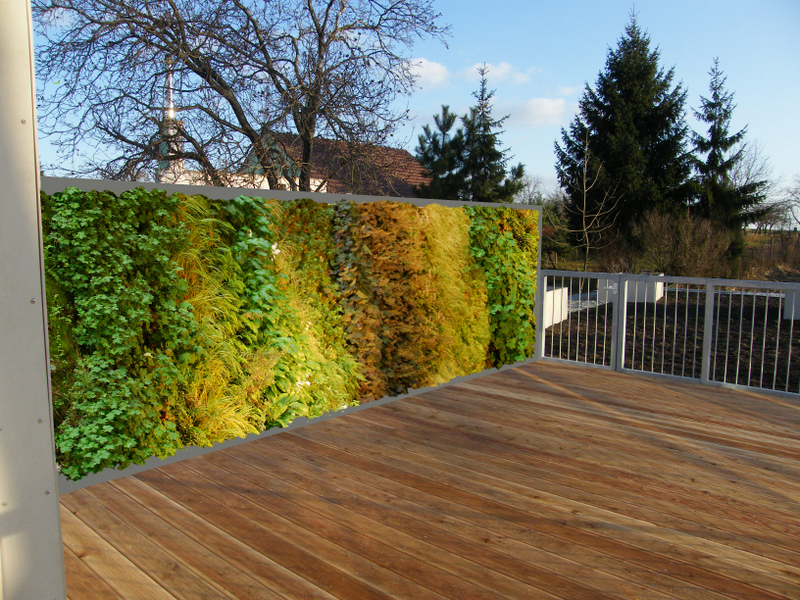 Mur Vegetal Exterieur Pictures to pin on Pinterest