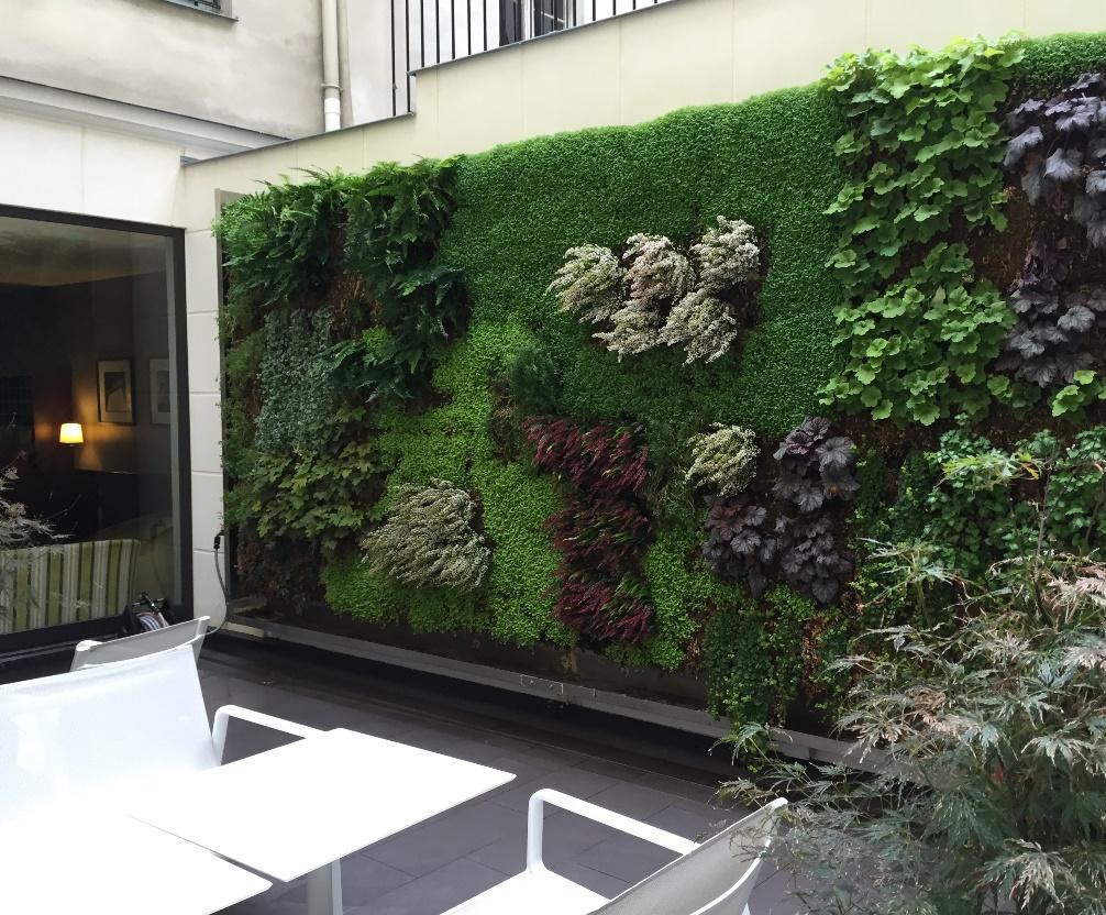 Creation Mur Vegetal Exterieur mur végétal extérieur - installation de murs végétaux en